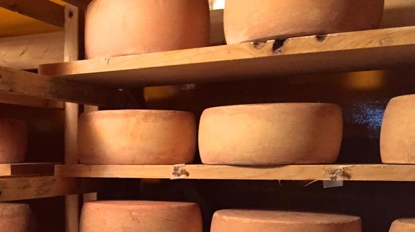 th_しあわせチーズ